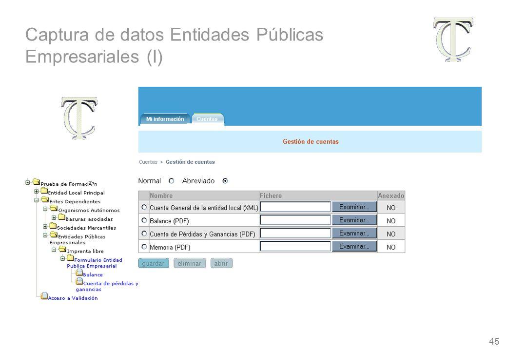 45 Captura de datos Entidades Públicas Empresariales (I)