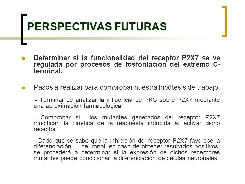 PERSPECTIVAS FUTURAS Determinar si la funcionalidad del receptor P2X7 se ve regulada por procesos de fosforilación del extremo C- terminal. Pasos a re