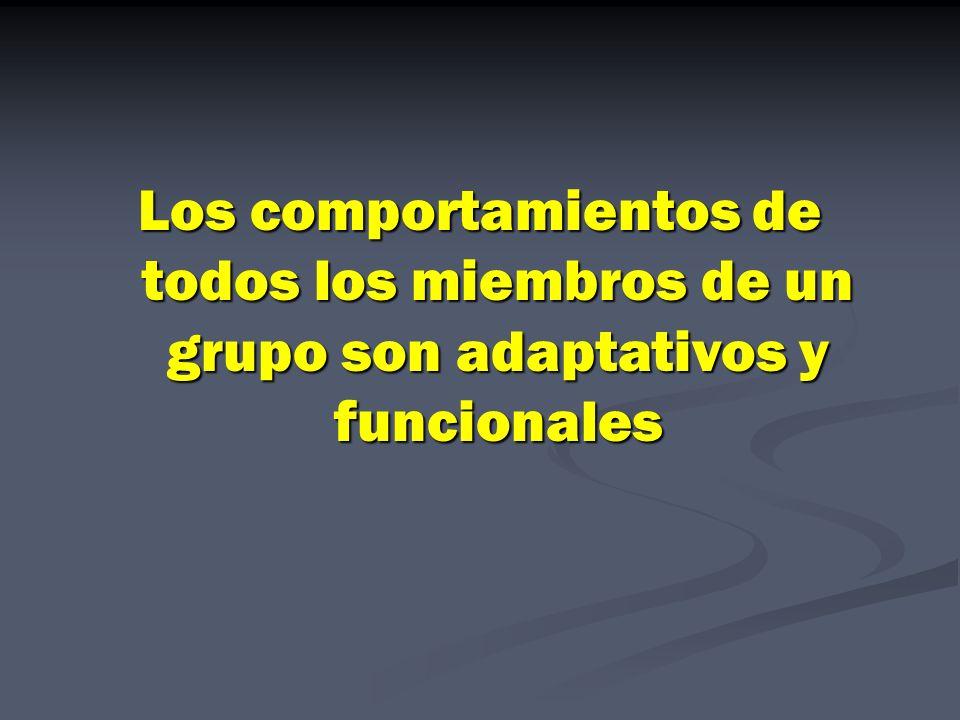 Los comportamientos de todos los miembros de un grupo son adaptativos y funcionales
