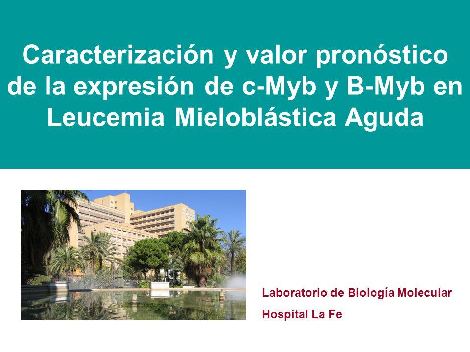 Caracterización y valor pronóstico de la expresión de c-Myb y B-Myb en Leucemia Mieloblástica Aguda Laboratorio de Biología Molecular Hospital La Fe