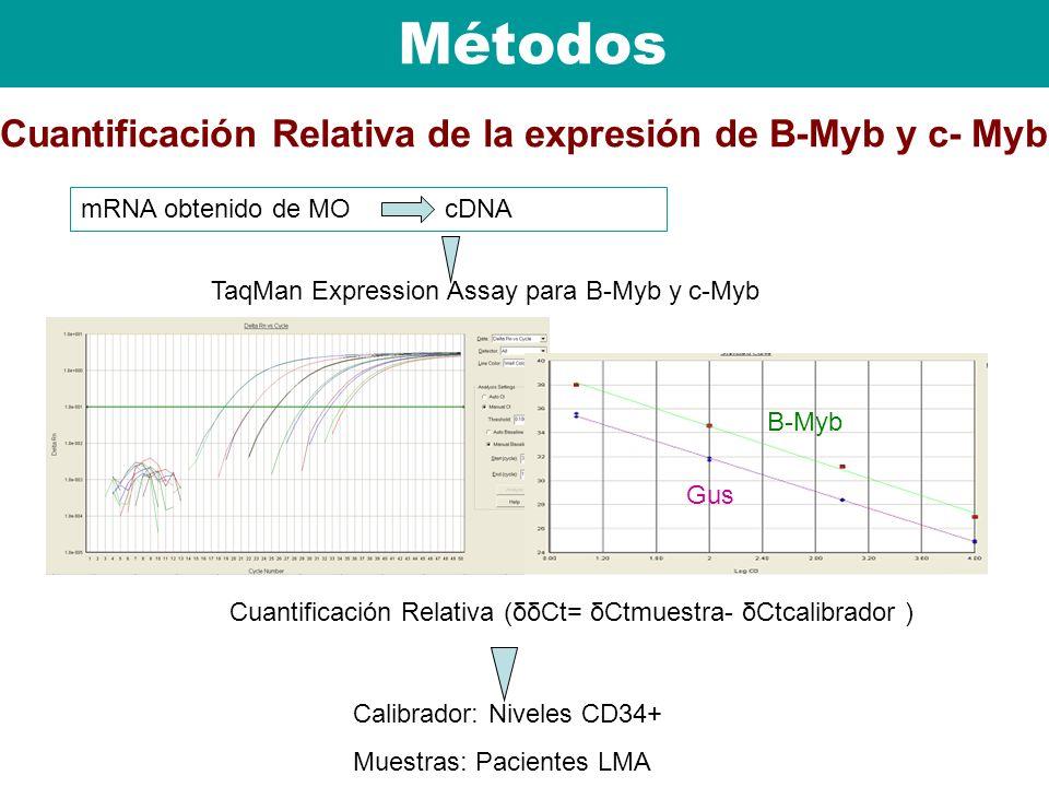 Cuantificación Relativa de la expresión de B-Myb y c- Myb Calibrador: Niveles CD34+ Muestras: Pacientes LMA Cuantificación Relativa (δδCt= δCtmuestra-