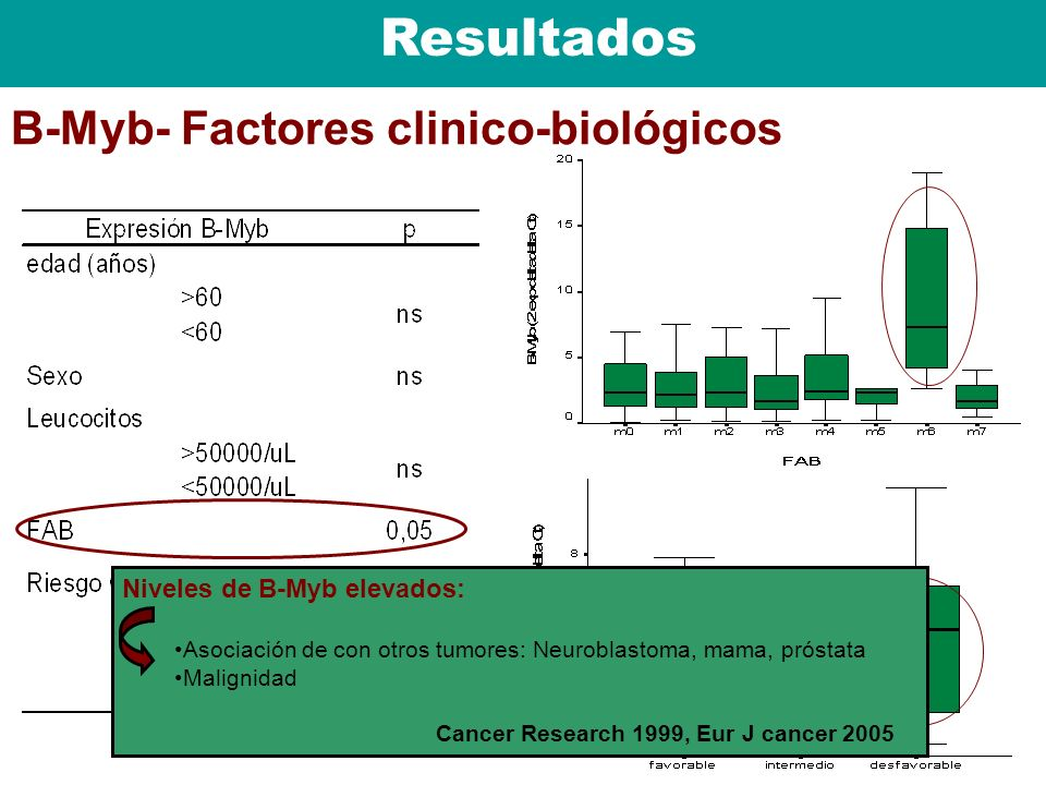Resultados B-Myb- Factores clinico-biológicos Niveles de B-Myb elevados: Asociación de con otros tumores: Neuroblastoma, mama, próstata Malignidad Can