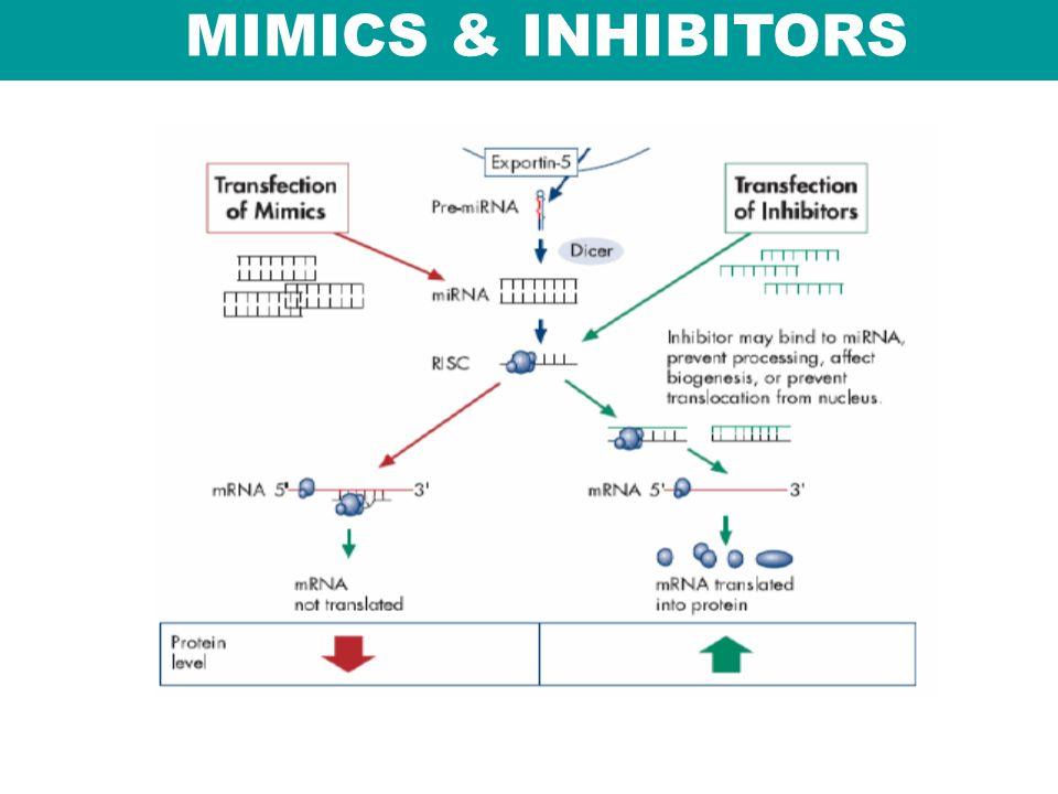 MIMICS & INHIBITORS