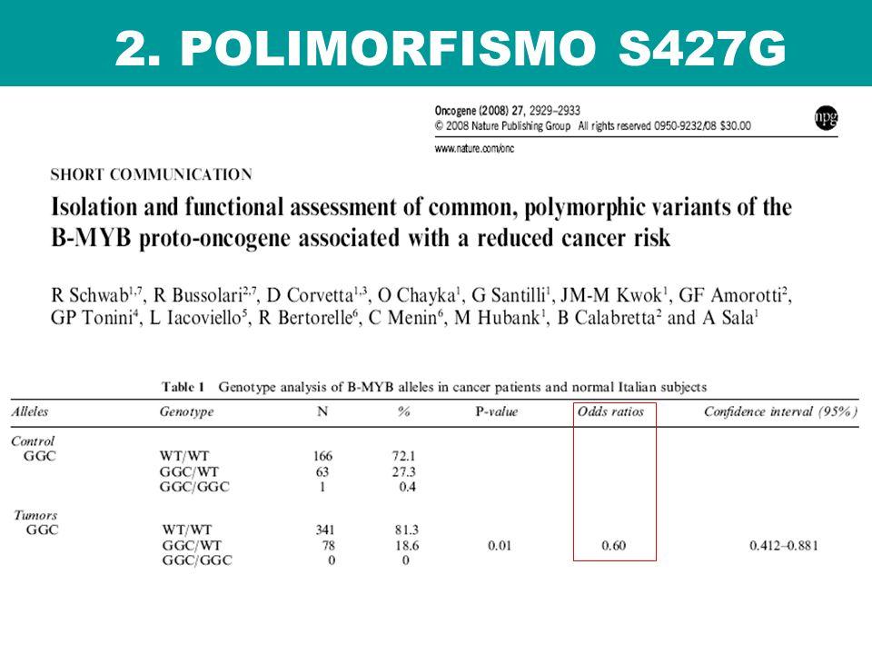 2. POLIMORFISMO S427G