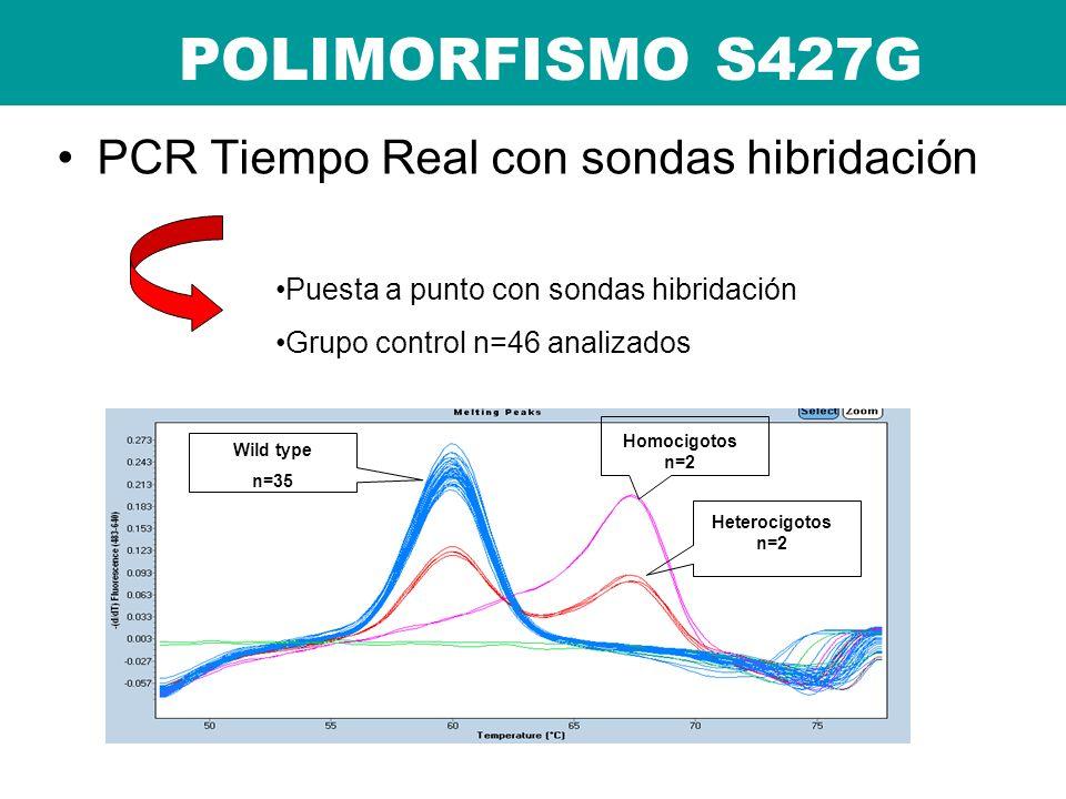 PCR Tiempo Real con sondas hibridación POLIMORFISMO S427G Puesta a punto con sondas hibridación Grupo control n=46 analizados Wild type n=35 Homocigot