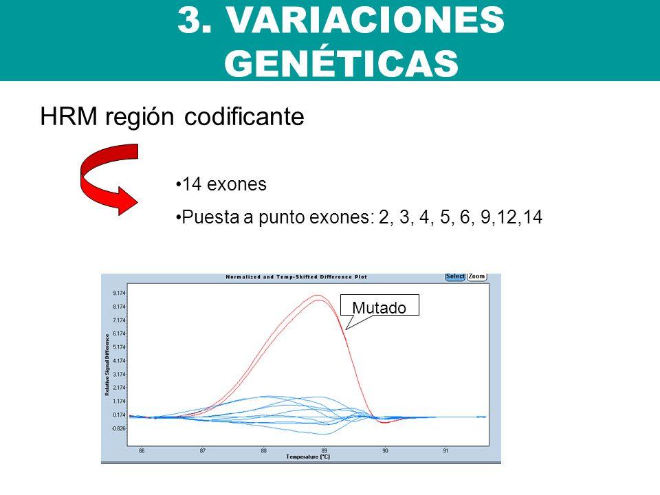 HRM región codificante 3. VARIACIONES GENÉTICAS 14 exones Puesta a punto exones: 2, 3, 4, 5, 6, 9,12,14 Mutado