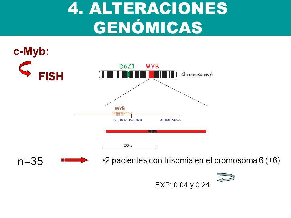 n=35 4. ALTERACIONES GENÓMICAS 2 pacientes con trisomia en el cromosoma 6 (+6) EXP: 0.04 y 0.24 c-Myb: FISH