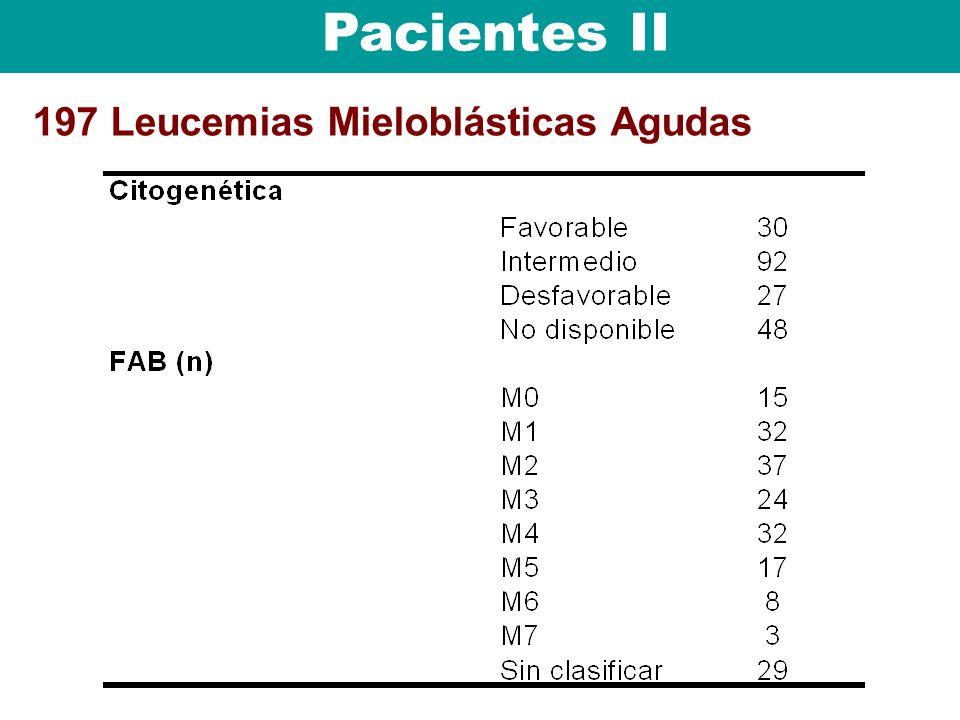 197 Leucemias Mieloblásticas Agudas Pacientes II