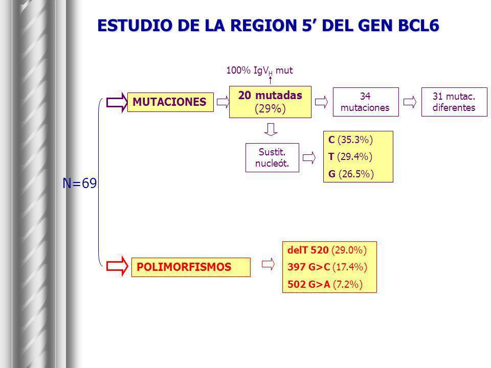 ESTUDIO DE LA REGION 5 DEL GEN BCL6 N=69 100% IgV H mut 20 mutadas (29%) 34 mutaciones 31 mutac. diferentes Sustit. nucleót. C (35.3%) T (29.4%) G (26