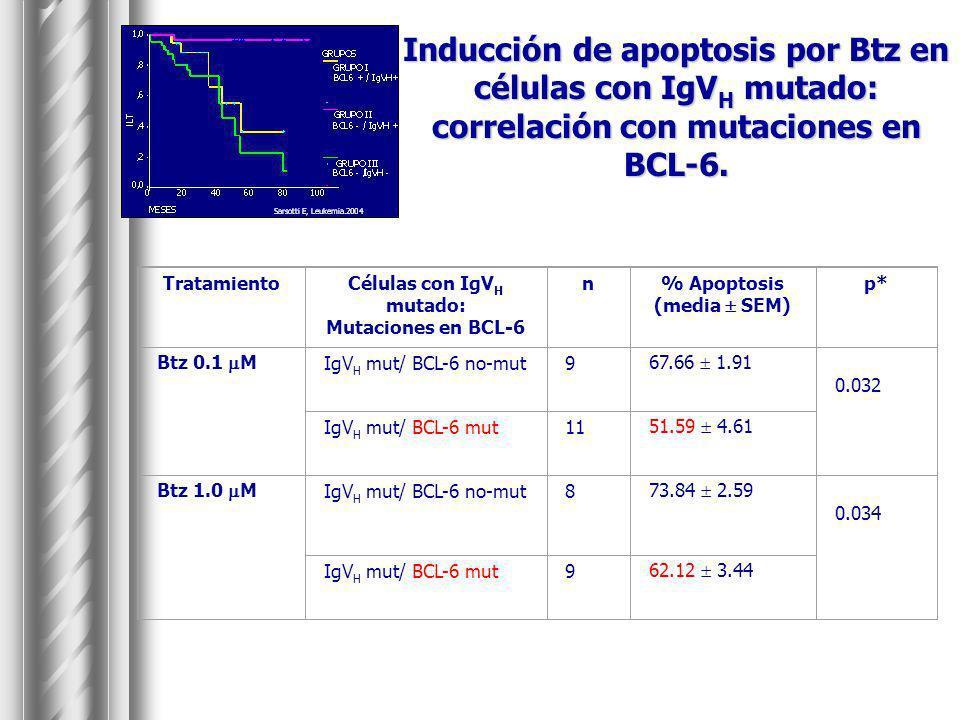 Inducción de apoptosis por Btz en células con IgV H mutado: correlación con mutaciones en BCL-6. TratamientoCélulas con IgV H mutado: Mutaciones en BC