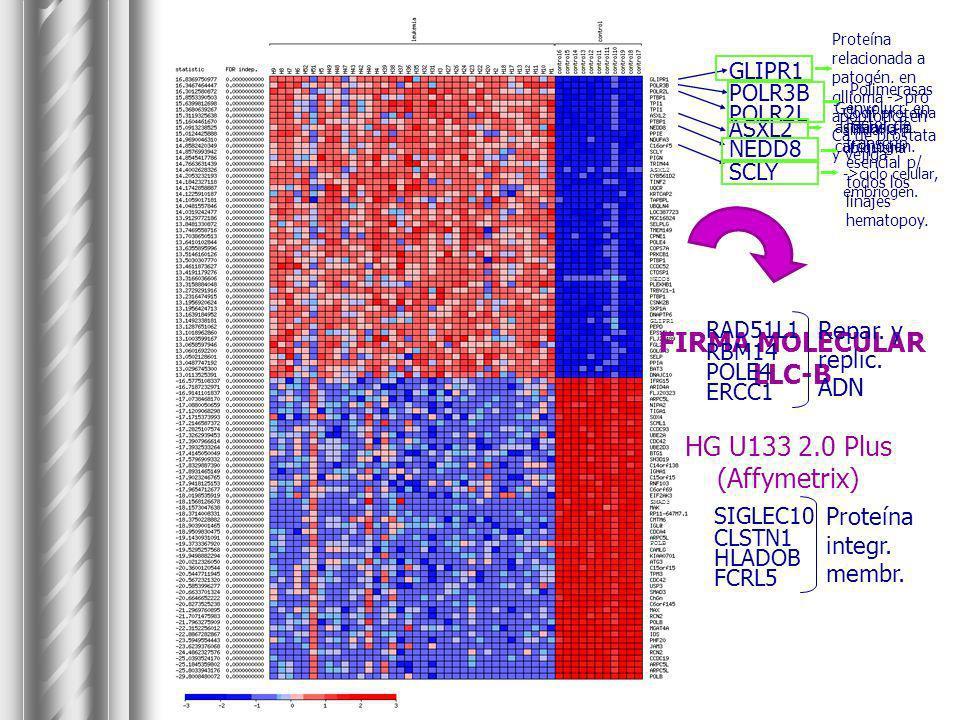 ASXL2 NEDD8 GLIPR1 SMAD3 POLB FIRMA MOLECULAR LLC-B HG U133 2.0 Plus (Affymetrix) GLIPR1 POLR3B POLR2L ASXL2 NEDD8 SCLY RAD51L1 RBM14 POLE4 ERCC1 Repa