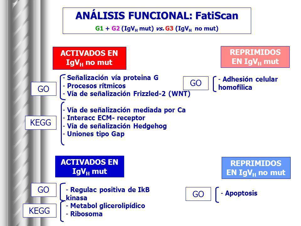 ANÁLISIS FUNCIONAL: FatiScan G1 + G2 (IgV H mut) vs. G3 (IgV H no mut) ACTIVADOS EN IgV H no mut REPRIMIDOS EN IgV H mut ACTIVADOS EN IgV H mut REPRIM