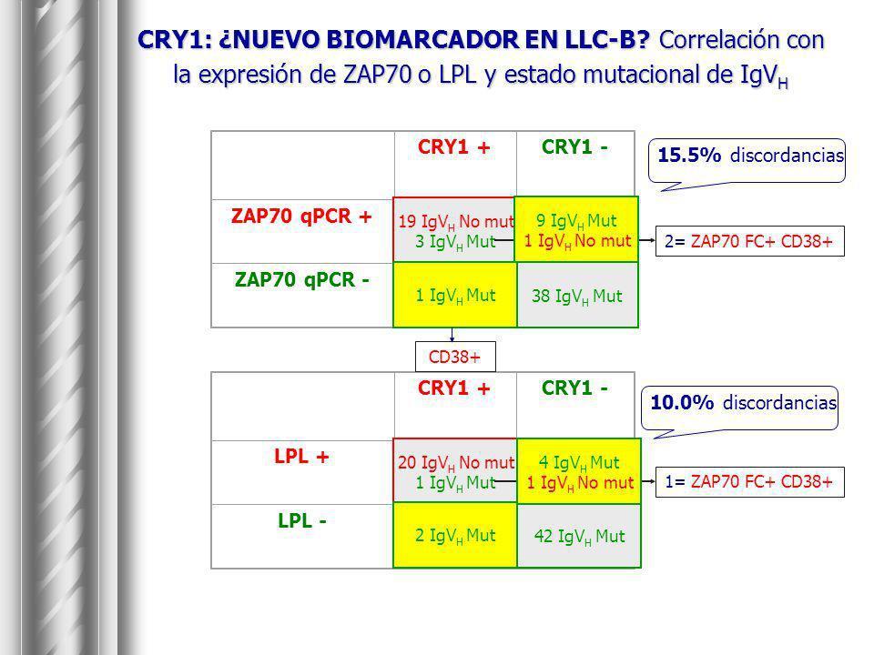 CRY1: ¿NUEVO BIOMARCADOR EN LLC-B? Correlación con la expresión de ZAP70 o LPL y estado mutacional de IgV H CRY1 +CRY1 - ZAP70 qPCR + 2210 ZAP70 qPCR