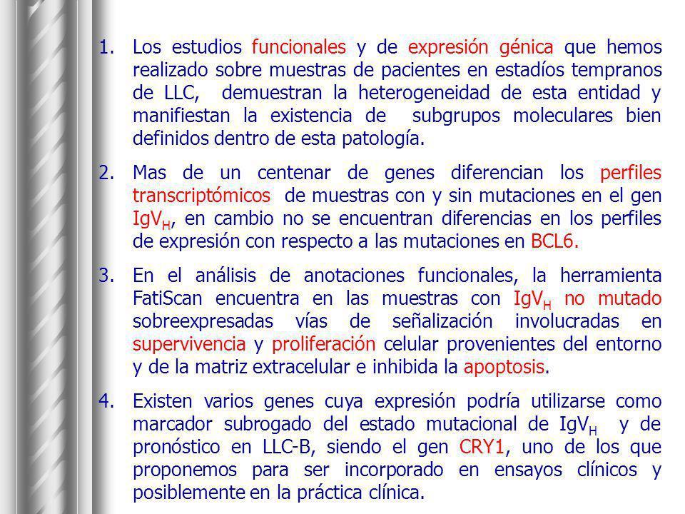 1.Los estudios funcionales y de expresión génica que hemos realizado sobre muestras de pacientes en estadíos tempranos de LLC, demuestran la heterogen