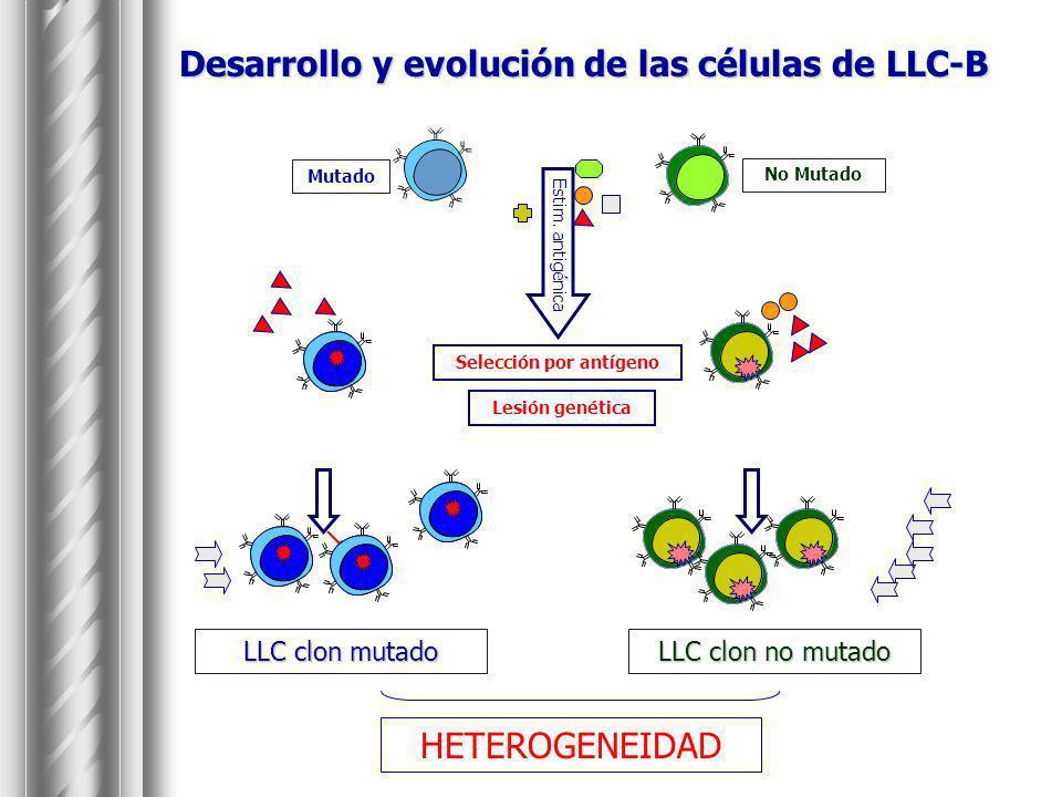 FACTORES PRONÓSTICO EN LLC Estadíos de Binet o Rai Tiempo duplicación linfocitario Timidina-kinasa 2 microglobulina LDH Patrón histopatológico de médula ósea.