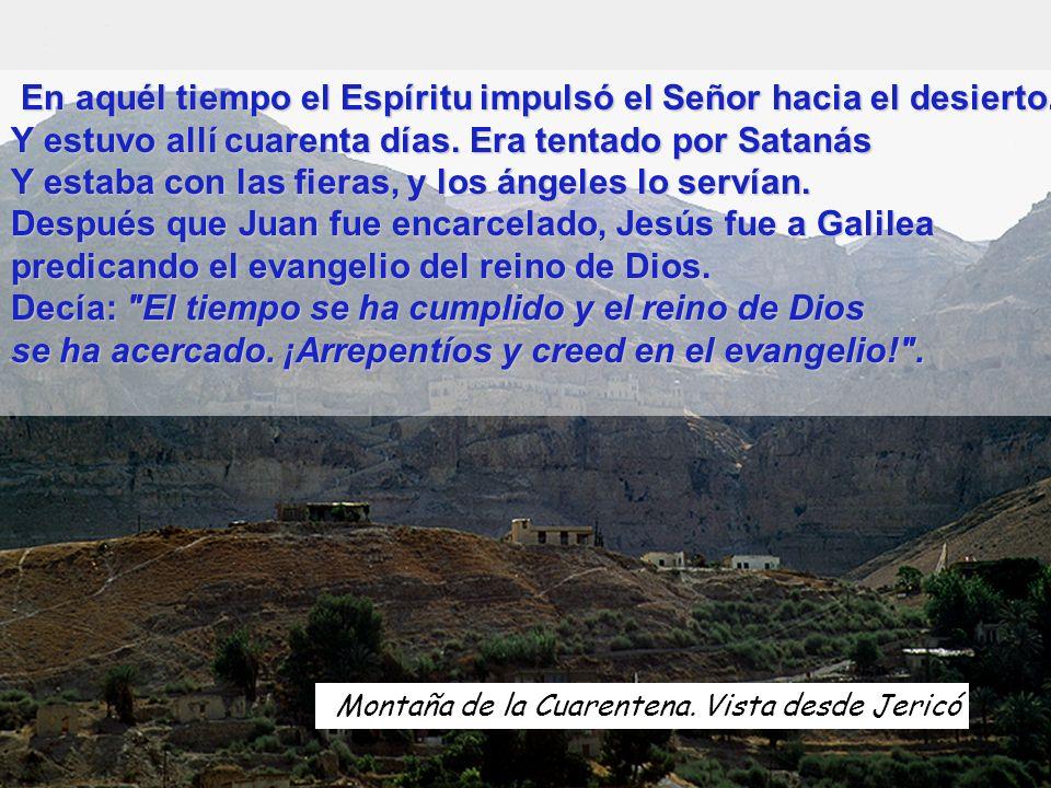 Desierto de Juda No sólo de pan vive el hombre, sino de toda palabra que sale de la boca de Dios .