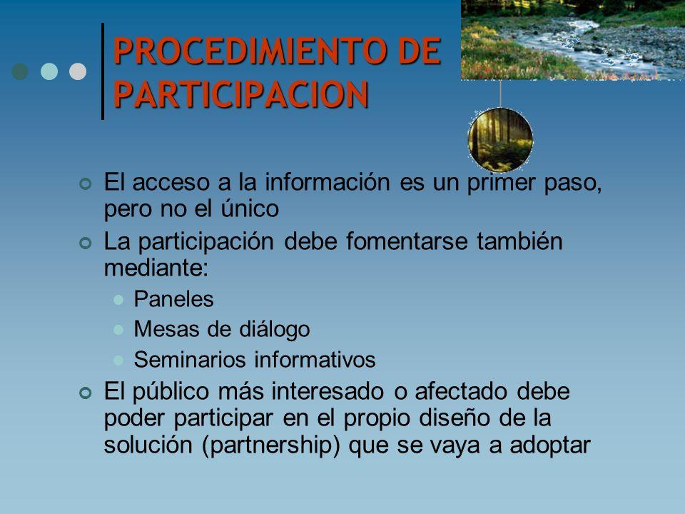 PROCEDIMIENTO DE PARTICIPACION El acceso a la información es un primer paso, pero no el único La participación debe fomentarse también mediante: Panel