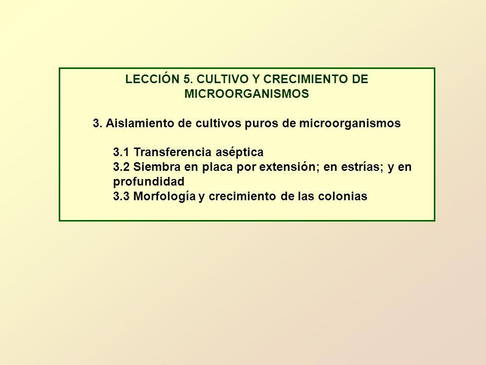 LECCIÓN 5. CULTIVO Y CRECIMIENTO DE MICROORGANISMOS 3. Aislamiento de cultivos puros de microorganismos 3.1 Transferencia aséptica 3.2 Siembra en plac