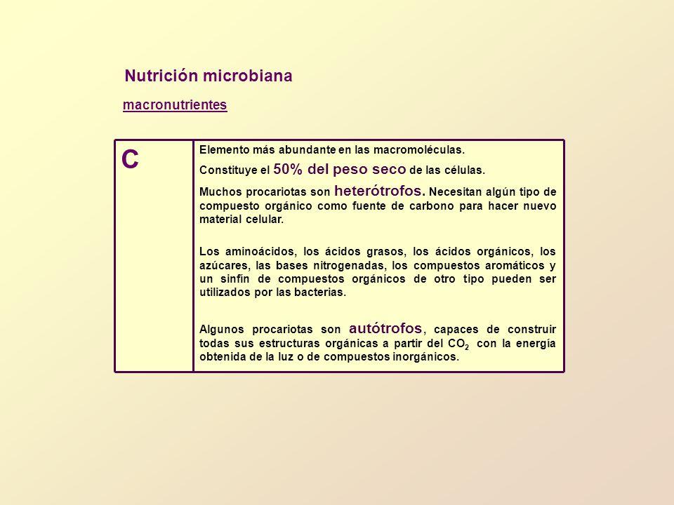 Nutrición microbiana En una bacteria típica, alrededor del 12% de su peso seco es N.