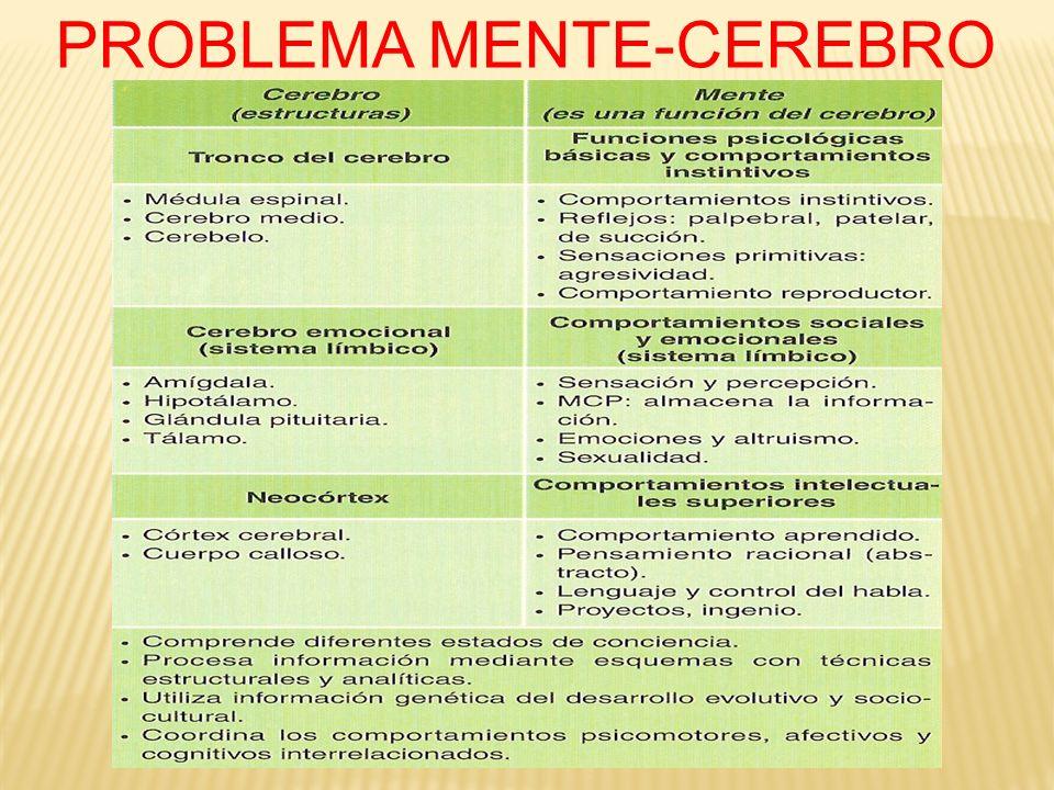 PSICOTROPICOS EL MDMA (ÉXTASIS) FUE DESCUBIERTA (1920) ACCIDENTALMENTE POR LOS LABORATORIOS MERCK, PERO LA PRIMERA INVESTIGACIÓN CIENTÍFICA EN HUMANOS LA REALIZARÁ EL QUÍMICO Y FARMACÓLOGO A.SCHULGIN (1976) SEGÚN ANTONIO ESCOHOTADO, EL ÉXTASIS TIENE COMO RASGO PECULIAR LA EMPATÍA, ENTENDIDA ES SENTIDO ETIMOLÓGICO: CAPACIDAD PARA ESTABLECER CONTACTO CON EL PATHOS INTERIOR O SENTIMIENTO.