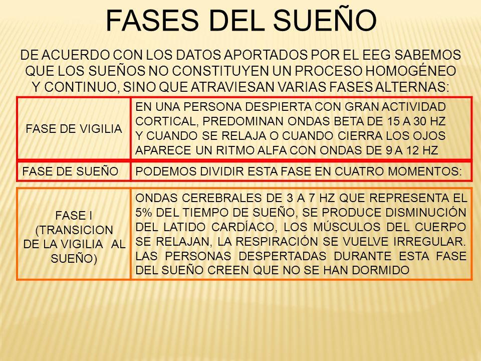 FASES DEL SUEÑO DE ACUERDO CON LOS DATOS APORTADOS POR EL EEG SABEMOS QUE LOS SUEÑOS NO CONSTITUYEN UN PROCESO HOMOGÉNEO Y CONTINUO, SINO QUE ATRAVIES