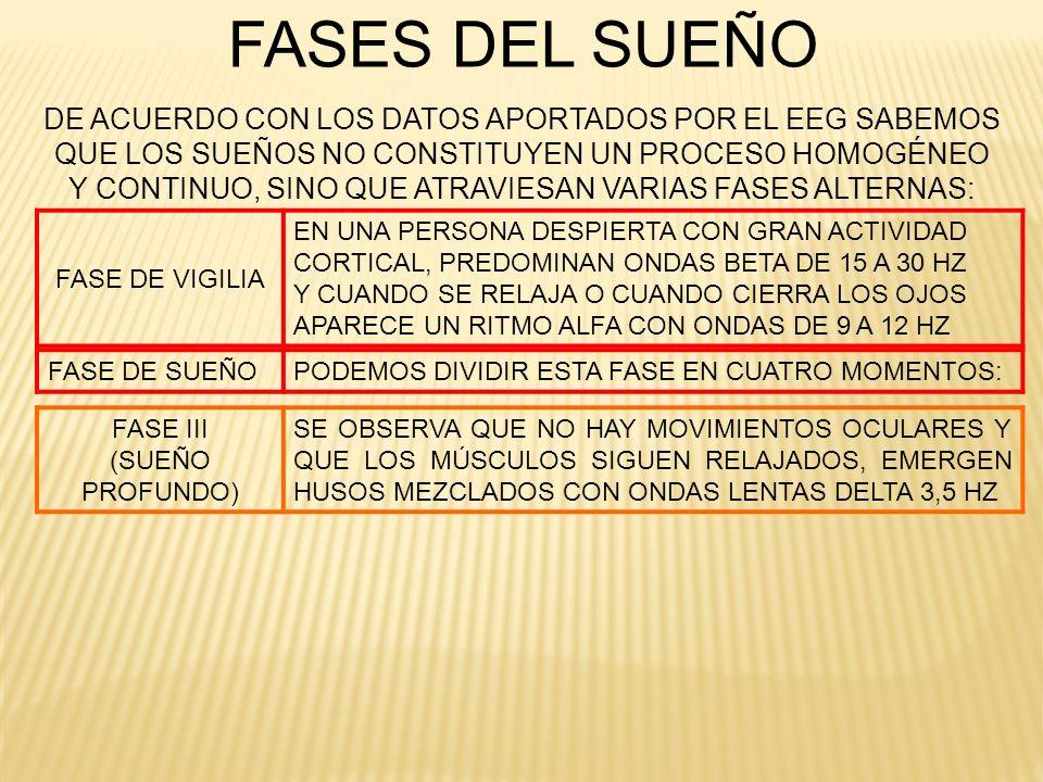 FASE III (SUEÑO PROFUNDO) SE OBSERVA QUE NO HAY MOVIMIENTOS OCULARES Y QUE LOS MÚSCULOS SIGUEN RELAJADOS, EMERGEN HUSOS MEZCLADOS CON ONDAS LENTAS DEL