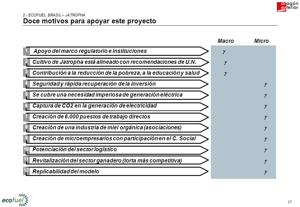 16 2.- ECOFUEL BRASIL – JATROPHA 2.- ECOFUEL BRASIL – JATROPHA ECOFUEL tiene los conocimientos, la necesidad y la solvencia necesaria para impulsar el