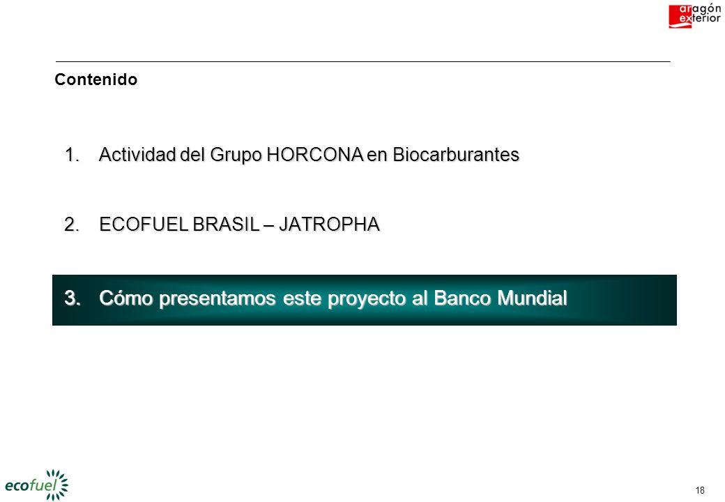 17 2.- ECOFUEL BRASIL – JATROPHA 2.- ECOFUEL BRASIL – JATROPHA Doce motivos para apoyar este proyecto 1. 2 3 4 5 6 7. 8 9 10 11 12 Apoyo del marco reg
