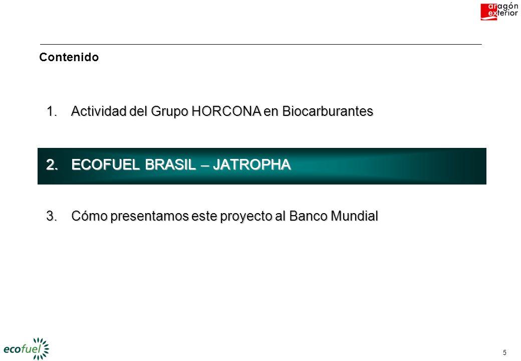 5 1.Actividad del Grupo HORCONA en Biocarburantes 2.ECOFUEL BRASIL – JATROPHA 3.Cómo presentamos este proyecto al Banco Mundial Contenido