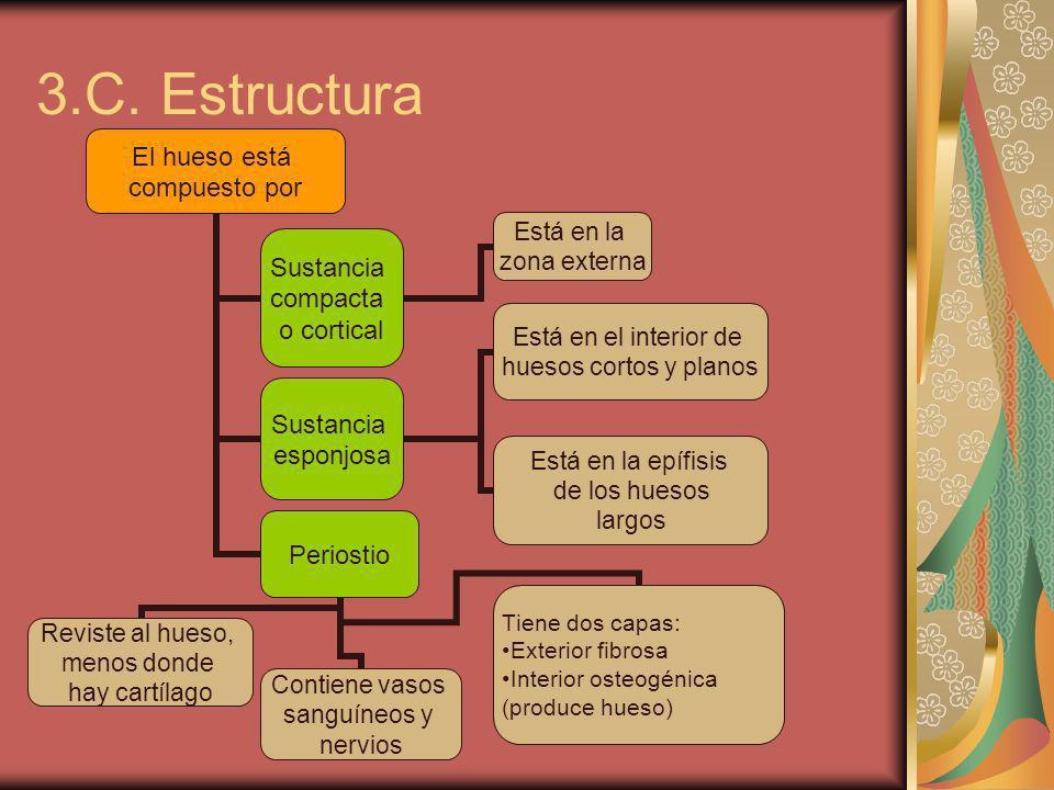 4.Generalidades de la artrología 4.A.