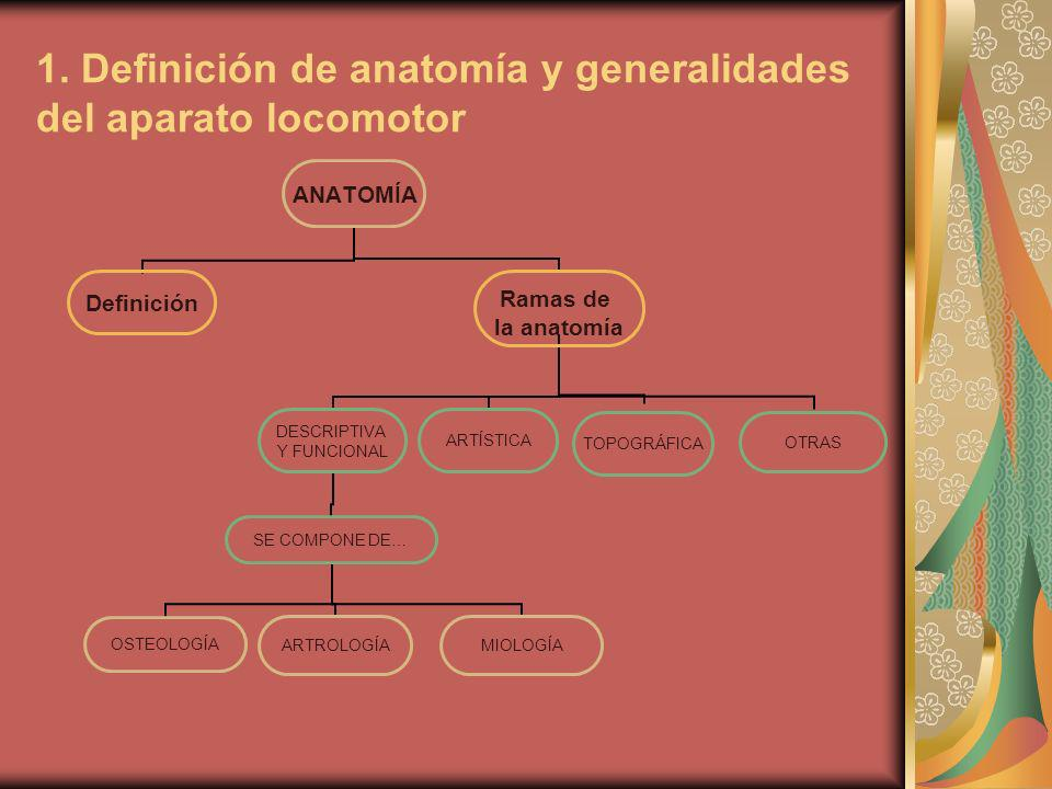 2.Generalidades del aparto locomotor. 2.A.
