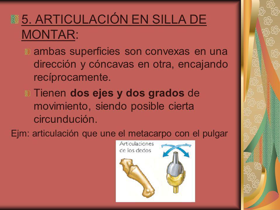 3.TROCOIDEAS: son uniaxiales y con un grado de movimiento.