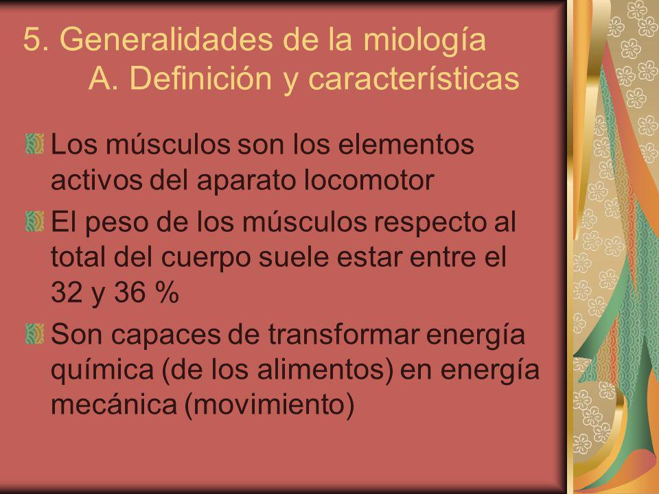 B.Estructura En todo músculo esquelético diferenciamos un ORIGEN y una INSERCIÓN.