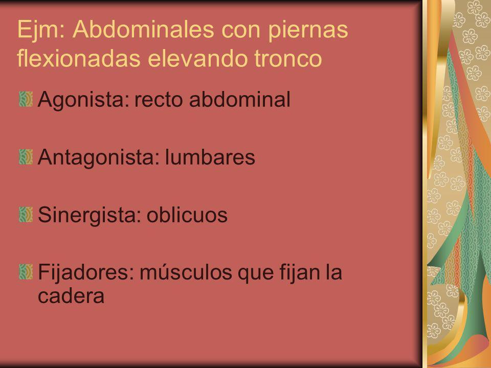 Ejm: Abdominales con piernas flexionadas elevando tronco Agonista: recto abdominal Antagonista: lumbares Sinergista: oblicuos Fijadores: músculos que