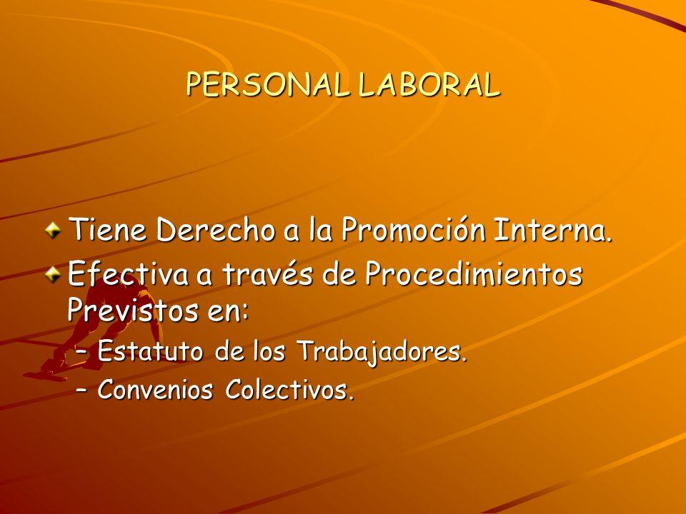 Tiene Derecho a la Promoción Interna. Efectiva a través de Procedimientos Previstos en: –Estatuto de los Trabajadores. –Convenios Colectivos.