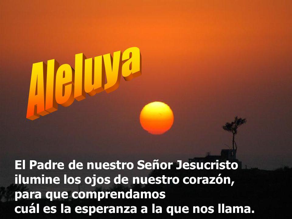 El Señor nos dará la lluvia, y nuestra tierra dará su fruto. La justicia marchará ante él, la salvación seguirá sus pasos. Muéstranos, Señor, tu miser