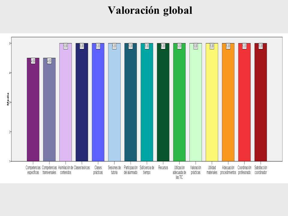 Valoración global