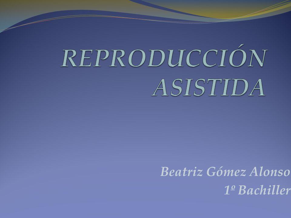 Beatriz Gómez Alonso 1º Bachiller