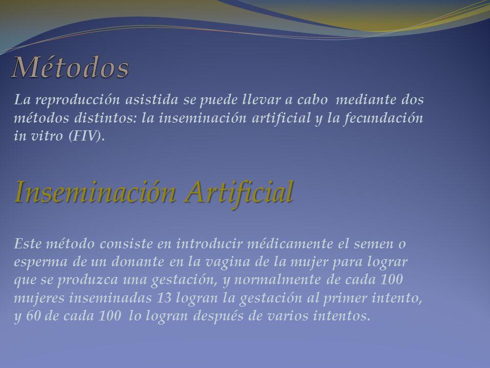 La reproducción asistida se puede llevar a cabo mediante dos métodos distintos: la inseminación artificial y la fecundación in vitro (FIV). Inseminaci