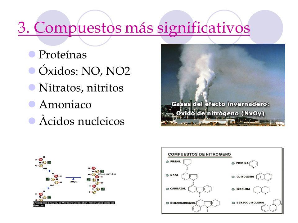 3. Compuestos más significativos Proteínas Óxidos: NO, NO2 Nitratos, nitritos Amoniaco Àcidos nucleicos