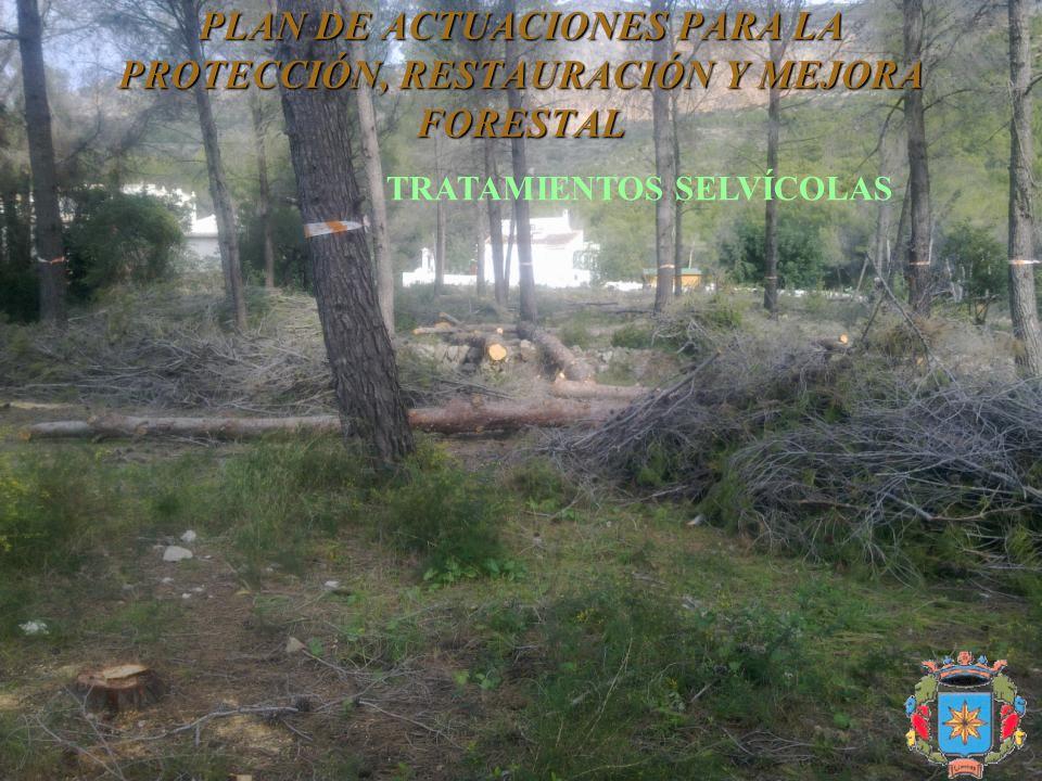 PLAN DE ACTUACIONES PARA LA PROTECCIÓN, RESTAURACIÓN Y MEJORA FORESTAL TRATAMIENTOS SELVÍCOLAS