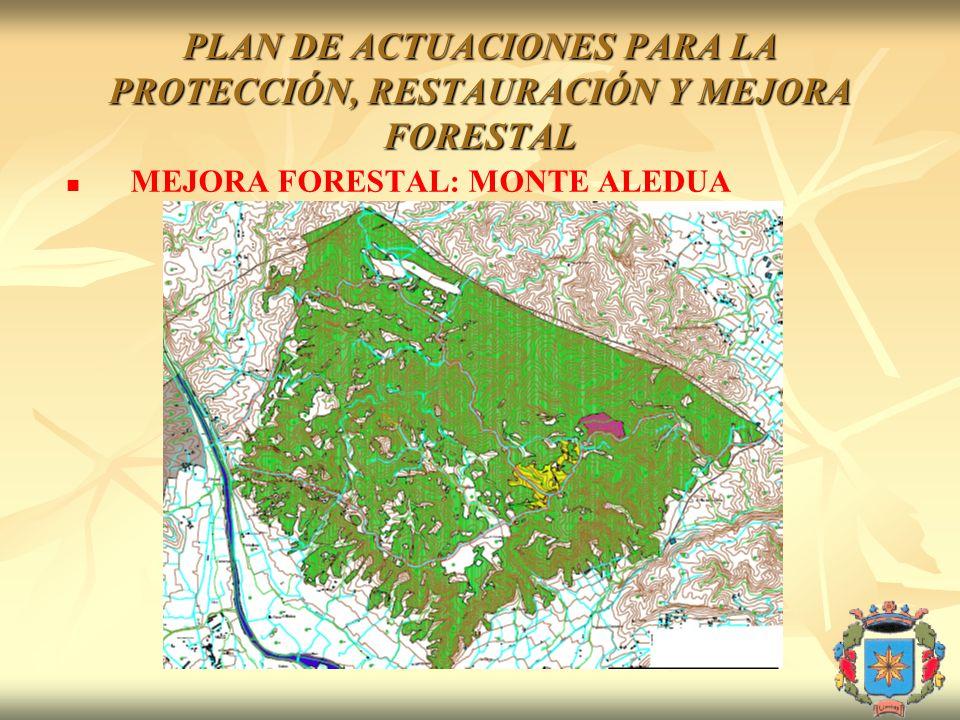 PLAN DE ACTUACIONES PARA LA PROTECCIÓN, RESTAURACIÓN Y MEJORA FORESTAL MEJORA FORESTAL: MONTE ALEDUA