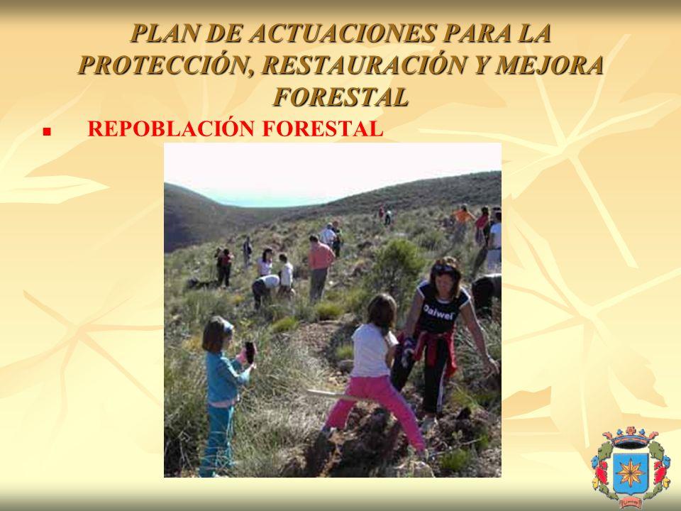 PLAN DE ACTUACIONES PARA LA PROTECCIÓN, RESTAURACIÓN Y MEJORA FORESTAL REPOBLACIÓN FORESTAL