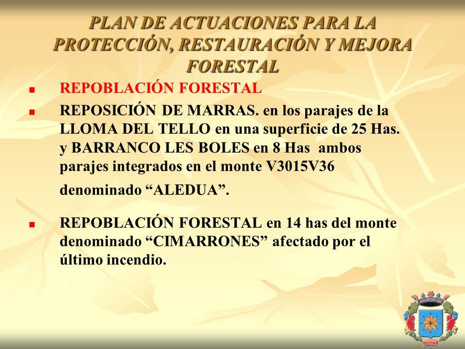 PLAN DE ACTUACIONES PARA LA PROTECCIÓN, RESTAURACIÓN Y MEJORA FORESTAL REPOBLACIÓN FORESTAL REPOSICIÓN DE MARRAS. en los parajes de la LLOMA DEL TELLO