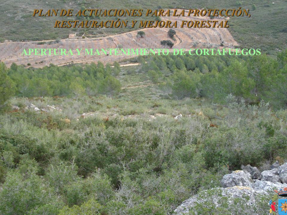 PLAN DE ACTUACIONES PARA LA PROTECCIÓN, RESTAURACIÓN Y MEJORA FORESTAL APERTURA Y MANTENIMIENTO DE CORTAFUEGOS
