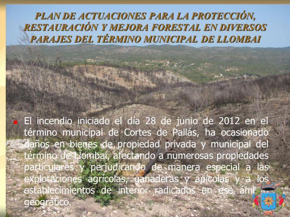 El incendio iniciado el día 28 de junio de 2012 en el término municipal de Cortes de Pallás, ha ocasionado daños en bienes de propiedad privada y muni