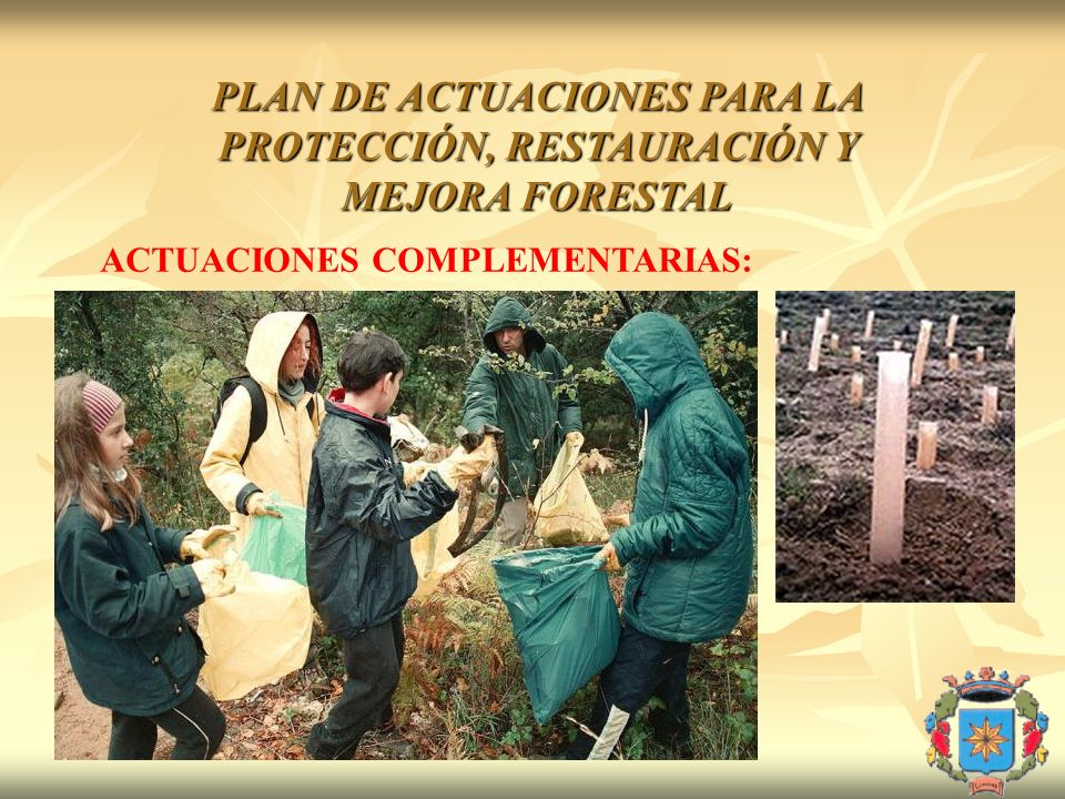 PLAN DE ACTUACIONES PARA LA PROTECCIÓN, RESTAURACIÓN Y MEJORA FORESTAL ACTUACIONES COMPLEMENTARIAS: