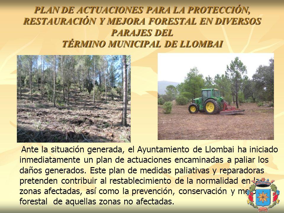 Ante la situación generada, el Ayuntamiento de Llombai ha iniciado inmediatamente un plan de actuaciones encaminadas a paliar los daños generados. Est