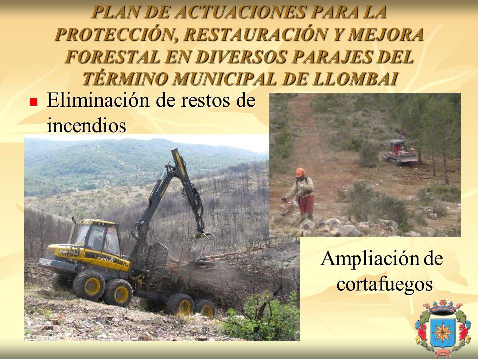 Eliminación de restos de incendios Eliminación de restos de incendios Ampliación de cortafuegos