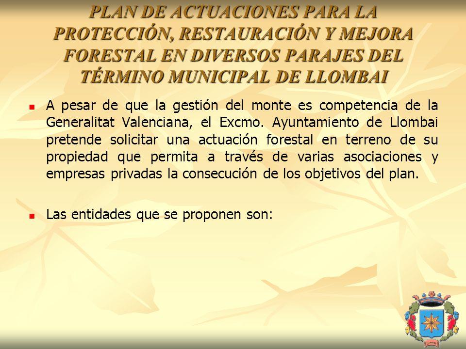 PLAN DE ACTUACIONES PARA LA PROTECCIÓN, RESTAURACIÓN Y MEJORA FORESTAL EN DIVERSOS PARAJES DEL TÉRMINO MUNICIPAL DE LLOMBAI A pesar de que la gestión